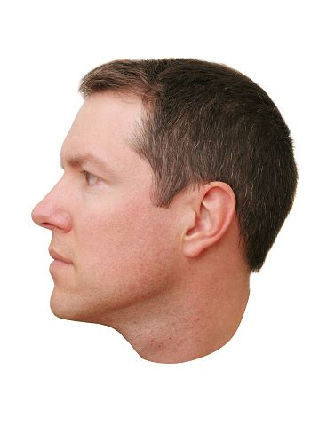 Closeup Of A Mans Head Profile Stock Photo - Download ...