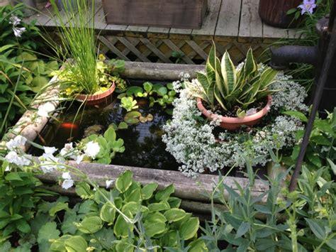 Teich Auf Balkon by Mini Gartenteich Bauen Kleine Oasen Im Garten Oder Auf