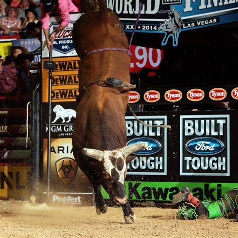 bushwacker greatest buckin bull   pbrcowboys