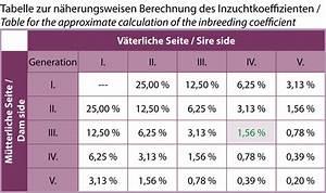 Steuer Auf Renten Online Berechnen : was steckt in einem pedigree arabische pferde in the focus ~ Themetempest.com Abrechnung