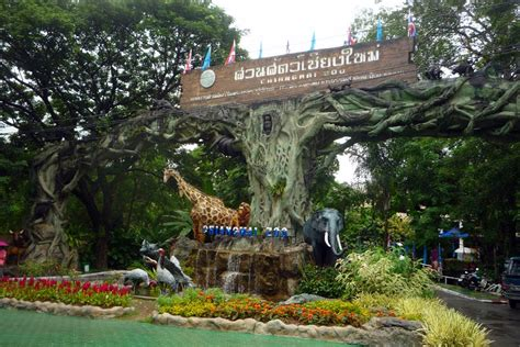 thailand 2010 chiang mai zoo panoramio photo of chiang mai zoo entrance