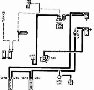 1979 Ford F150 Vacuum Line Routing Diagram