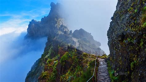 portugal mountain trail  madeira  bing desktop