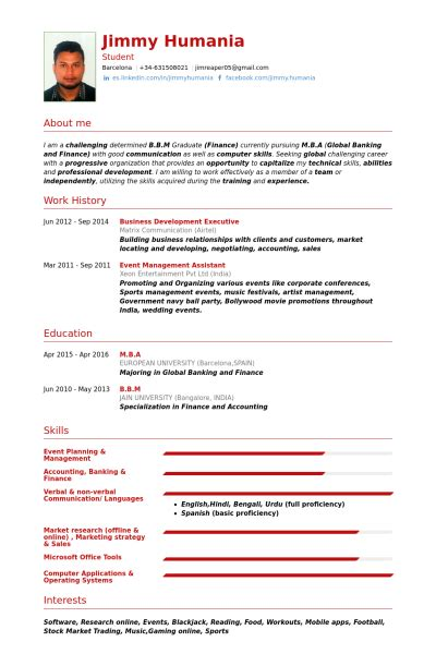 business development executive resume sles visualcv
