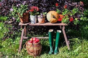 Garten Im Herbst : garten im herbst 6 to dos f r hobbyg rtner ~ Watch28wear.com Haus und Dekorationen