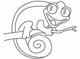 Chameleon Coloring Pages Cute Print sketch template