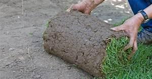 Granit Spüle Vor Und Nachteile : saatrasen oder rollrasen vor und nachteile mein sch ner garten ~ Bigdaddyawards.com Haus und Dekorationen