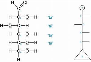 Kohlenhydrate Berechnen Formel : 04 1 monosaccharide glucose ~ Themetempest.com Abrechnung