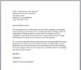 sample of acceptance letter for job promotion