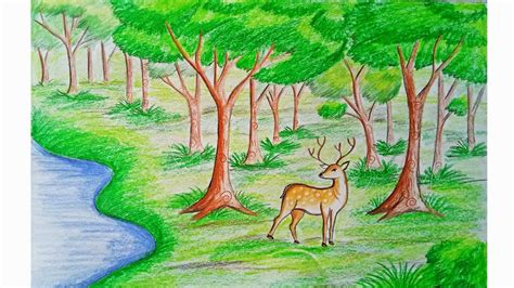 draw forest scene step  step  easy youtube