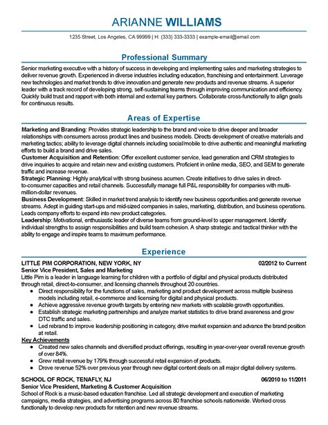 sle executive summary resume professional senior marketing