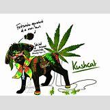 Biggie Smoking Weed   1024 x 759 png 453kB