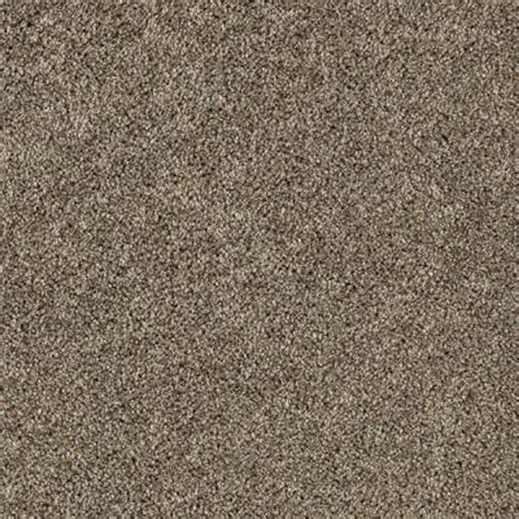 LifeProof Carpet Sample Gorrono Ranch I Color Category