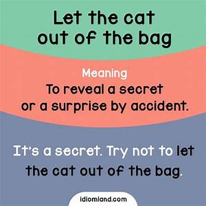 17 Best images about Idioms on Pinterest