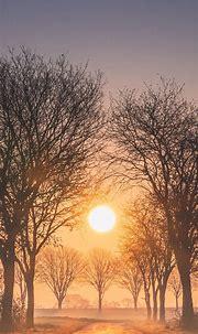 Sunrise Phone Wallpaper [1080x2340] - 006