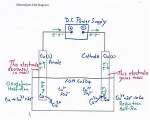 Electrolytic Cell  Plating Copper On Copper