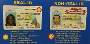 What You Need T... Real Id