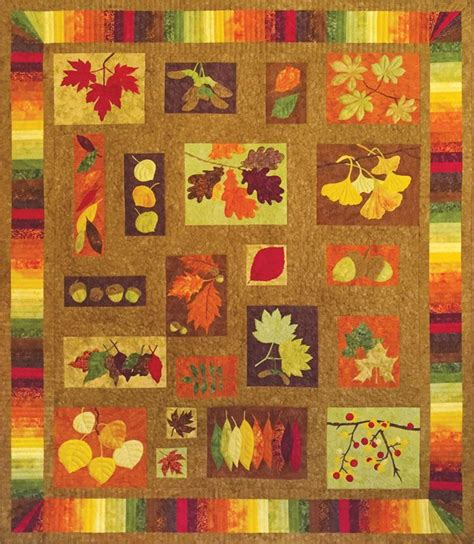 quilting by the bay equinox block of the month registration kit