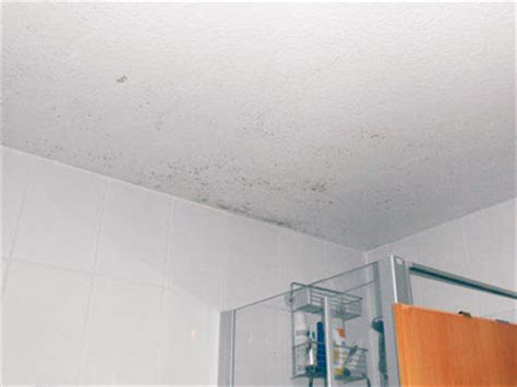 schimmelpilz im badezimmer schimmel im bad die sachverst 228 ndige zeigt wo es schimmelt