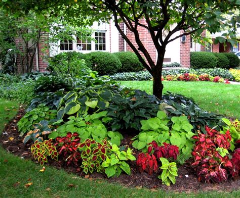 plants for a shady area small yard landscaping ideas shaded area old rosedale gardens in livonia michigan landscaping