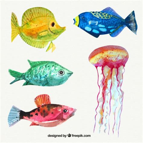 set  watercolor fishes  jellyfish vector