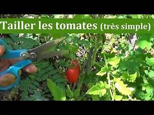 Comment Tuteurer Les Tomates : comment tailler les tomates tr s simple youtube ~ Melissatoandfro.com Idées de Décoration