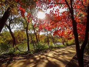 Peak of the Week: Redding – California Fall Color  Fall