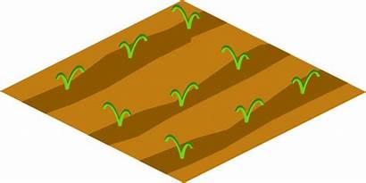 Clipart Soil Crops Clip Floor Plot Garden