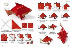 Origami Animaux Facile Gratuit : pliage origami animaux facile avion helico eflite ~ Dode.kayakingforconservation.com Idées de Décoration