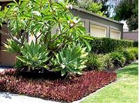 great tropical patio design ideas Top 10 Landscaping Ideas for 2014