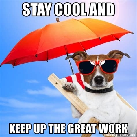 Keep Cool Meme - stay cool and keep up the great work summer dog meme generator