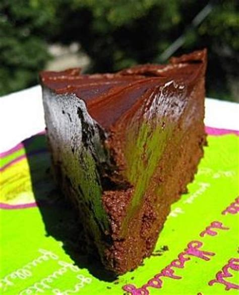 negative calorie chocolate cake recipe dishmaps