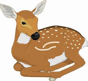 Resting Baby Deer Clip Art at Clker.com - vector clip art ...