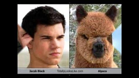 Funny Celeb Look Alike's!!!! (very Funny!!!!)