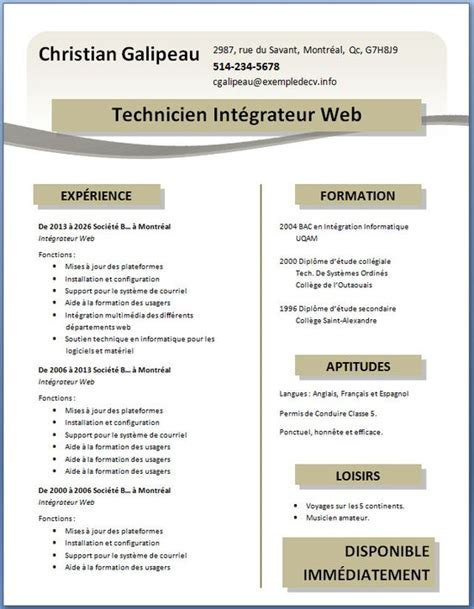 Exemple De Cv Professionnel Word by Exemple Word Cv Exemple Cv Professionnel Word Alienbar