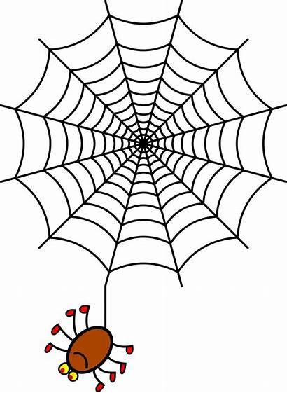 Spider Clipart Drawing Dessin Toile Tree Araignee