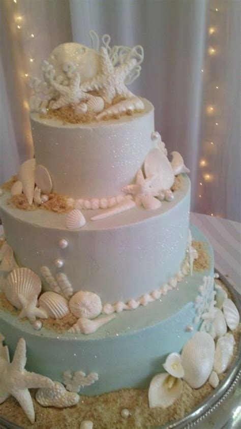cakes images sea shell cake hd wallpaper  background