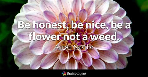 honest  nice   flower   weed aaron