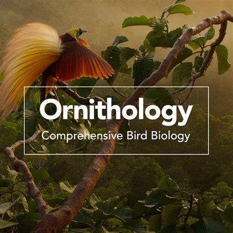 ornithology comprehensive bird biology bird academy