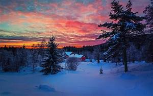 Winter snow sunset wallpaper | 1920x1200 | 204827 ...