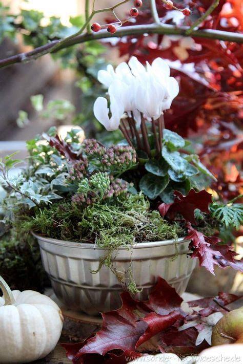 Garten Herbst Dekorieren by Alte Backform Bepflanzt Autumn Herbst Dekoration