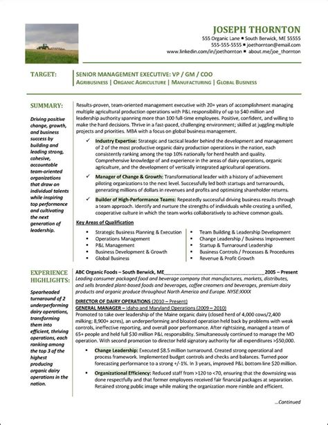 Resume Template For Senior Management by Senior Management Resume Exle For An Agricultural
