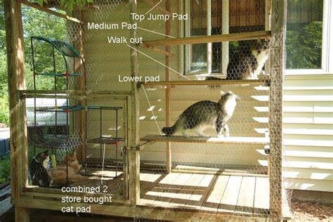 cat window perch 6 affordable diy cat furniture projects