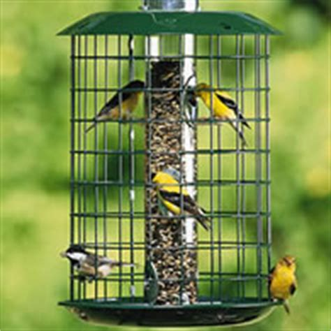 thistle feeder finch  nyjer seed feeders