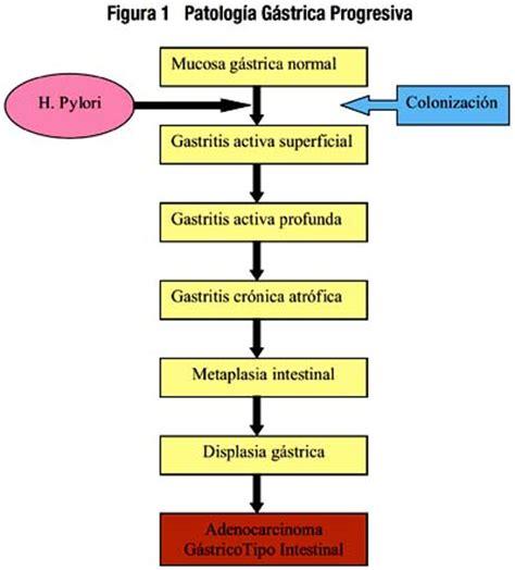 h pylori y cancer de estomago helicobacter pylori el