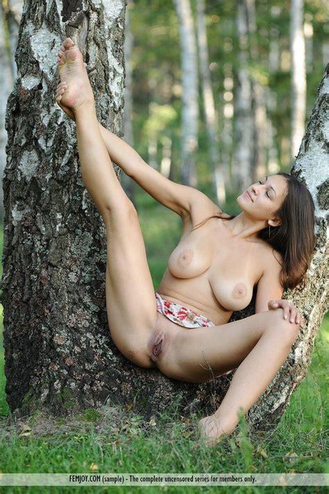 Busty Brunette Model Sofie Exposes Her Hot Naked Body