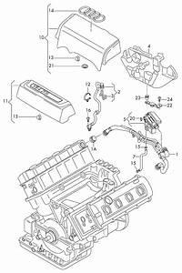 [QMVU_8575]  2008 Audi A6 Engine Bay Diagram. audi a3 engine diagram decor. audi a4 2 0t  b7 cold start issue youtube 2005 0t. 2002 audi a6 quattro engine diagram  wiring forums. forums the | 2008 Audi A6 Engine Bay Diagram |  | 2002-acura-tl-radio.info