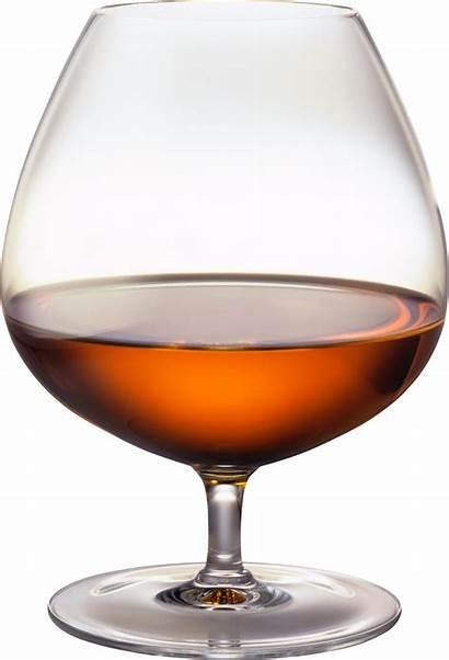 Cognac Glass Clipart Brandy Grape Cliparts Bottle
