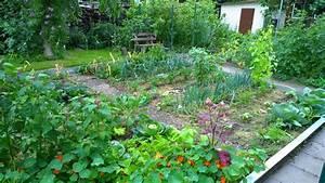 Mischkultur Im Garten : freudengarten mischkultur im l ndlichen gem segarten ~ Orissabook.com Haus und Dekorationen