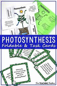 Use This Printable  Differentiated Foldable Notes Resource